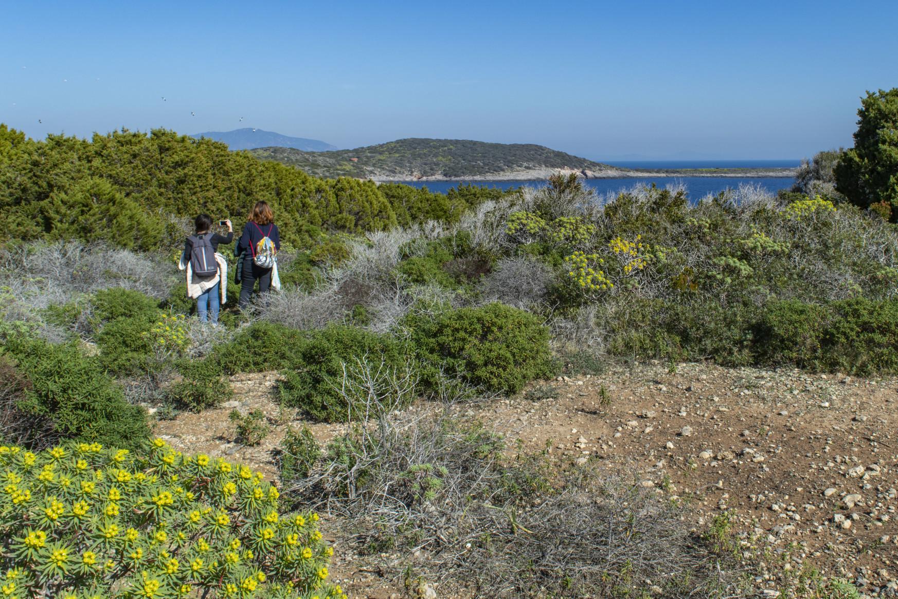 Inizio escursione naturalistica-Stop Over